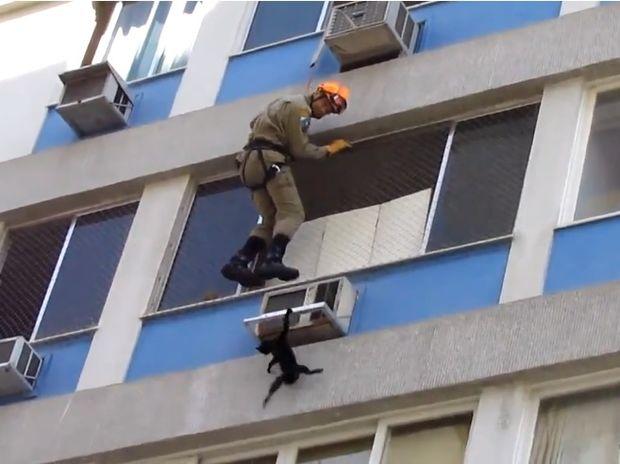 Δείτε την απίστευτη προσπάθεια διάσωσης αυτής της πολύ τυχερής γατούλας! (video)