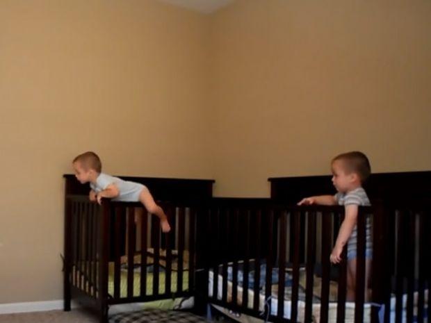 Απίθανο! Τα μωράκια ξεμυτίζουν κάθε βράδυ, αλλά δεν υπολόγισαν την κρυφή κάμερα! (video)
