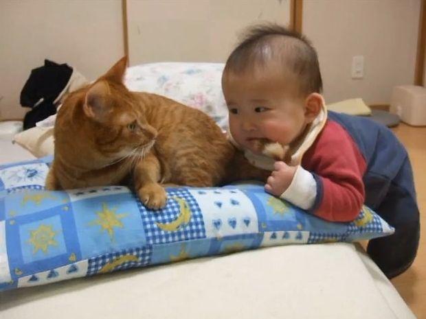 Δε φαντάζεστε την αντίδραση της γάτας όταν το μωρό της δαγκώνει την ουρά! (video)