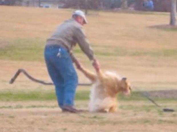 Δείτε την ξεκαρδιστική αντίδραση του σκυλάκου που θέλει να μείνει κι άλλο στο πάρκο! (video)