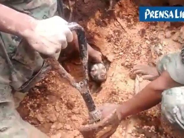 Αυτός ο σκύλος είχε άγιο! Δείτε τη διάσωση του μετά από 18 ώρες κάτω από το χώμα! (video)