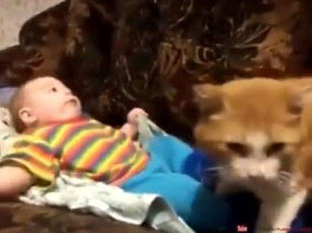 Η γάτα θέλει να βάλει το μωρό για ύπνο και θα τα καταφέρει όσο κι αν αυτό αντιστέκεται! (video)