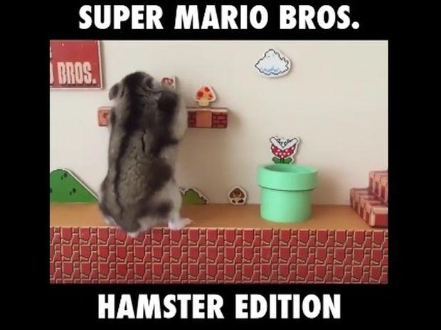 Ο Super Mario σε έκδοση χάμστερ! (video)