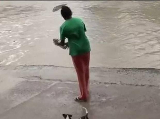 Αυτή η γυναίκα έδιωξε έναν κροκόδειλο απλά με τη σαγιονάρα της! (video)