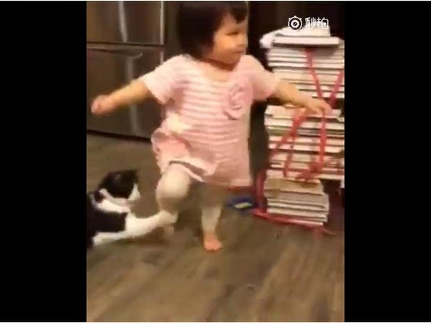 Η γάτα βάζει τρικλοποδιά στη μικρούλα και καμαρώνει για το κατόρθωμά της! (video)