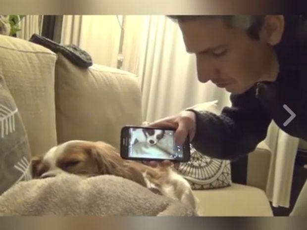 Πώς σταματάς τον σκύλο σου να ροχαλίζει! (video)