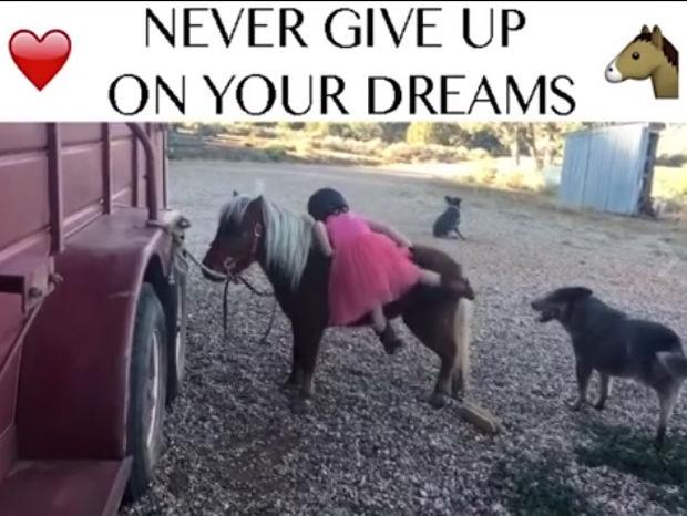 Η μικρούλα δεν μπορεί να ανέβει στο πόνυ αλλά δεν το βάζει κάτω! (video)