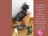 Παγκόσμια Ημέρα των Ζώων: Τους καλούς φίλους, τους αγαπάς κάθε μέρα!