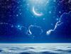 Νέα Σελήνη Ιανουαρίου στον Αιγόκερω: Πώς επηρεάζει τα 12 ζώδια;