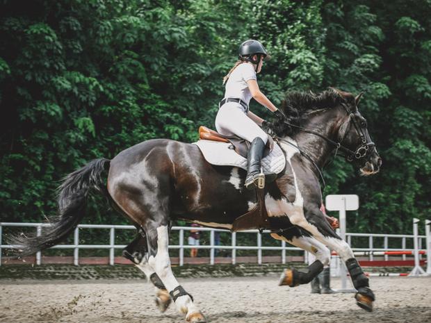 Ζώδια Σήμερα 2/8: Σαν τα άλογα του ιπποδρόμου...