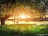 Ζώδια Σήμερα 22/9: Βρες τη «χρυσή τομή»