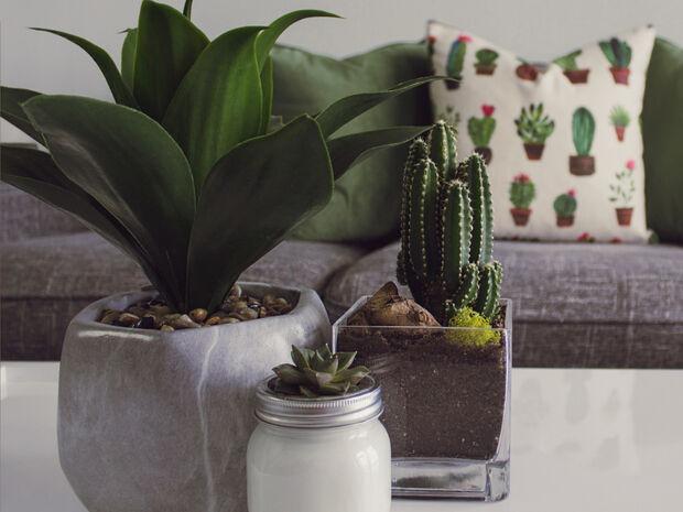 10 DIY ιδέες για να κάνεις το σπίτι και το δωματιό σου να μυρίζει άνοιξη