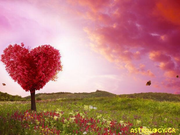 Ζώδια Σήμερα 14/05: Ο έρωτας έχει την τιμητική του!