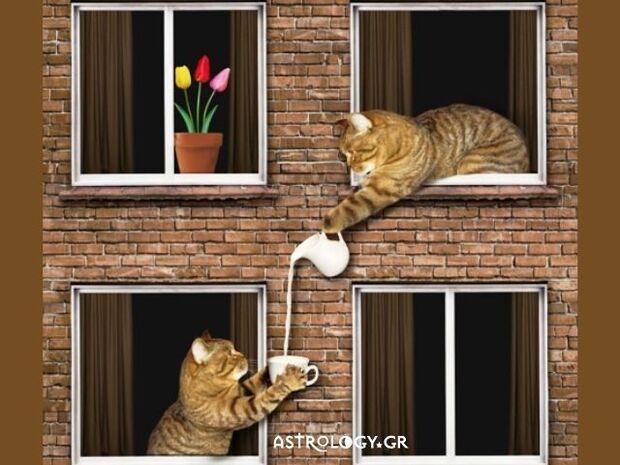 Τα 5 ζώδια που θα ήθελες να έχεις για γείτονες