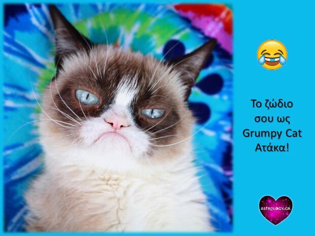Η ατάκα της grumpy cat που εκφράζει το δικό σου ζώδιο