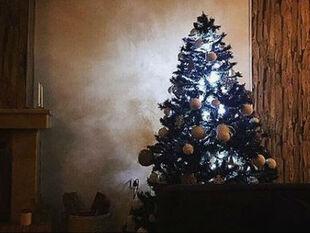 Ανδρικά ζώδια: Πώς θα περάσετε τα Χριστούγεννα