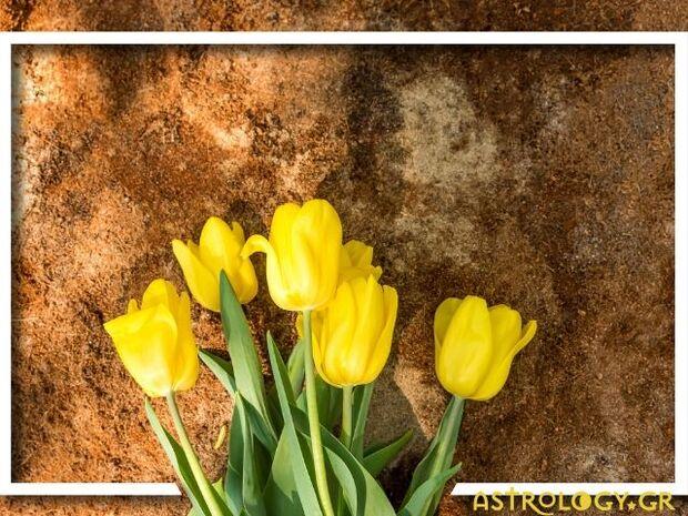 Ζώδια Σήμερα 27/03: Αναζητώντας σταθερότητα και αξιοπιστία
