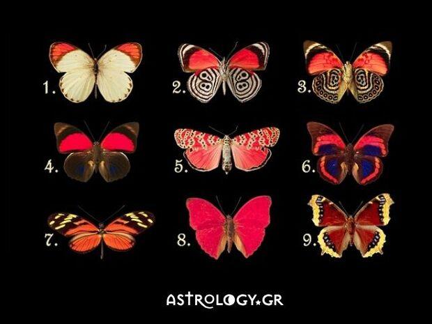Διάλεξε 1 από τα 9 πεταλούδες και δες τι κρύβεται στην ψυχή σου!