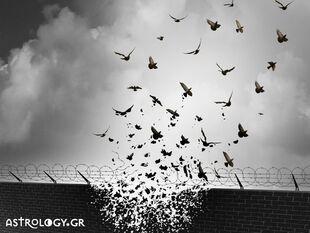 Ζώδια Σήμερα 06/07: Η αλήθεια απελευθερώνει