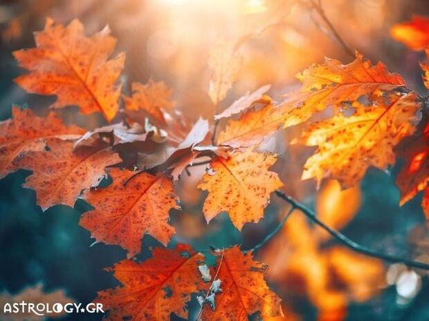 Ζώδια Σήμερα 01/09:  Φθινοπώριασε...