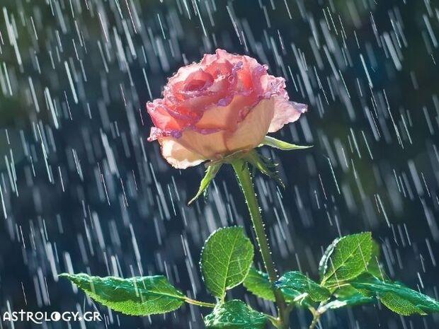 Ζώδια Σήμερα 25/09: Είναι η μέρα βροχερή...