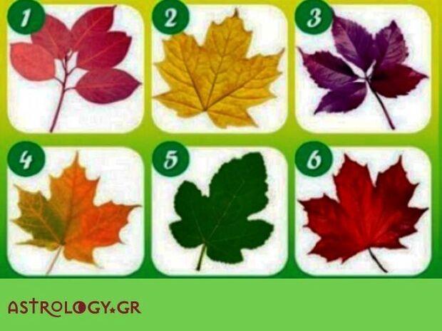 Διάλεξε 1 από τα 6 φύλλα και δες τι αποκαλύπτει για τον πραγματικό σου εαυτό!
