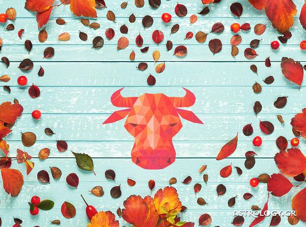 Ταύρε, τι δείχνουν τα άστρα για τα αισθηματικά σου την εβδομάδα 09/11 έως 15/11