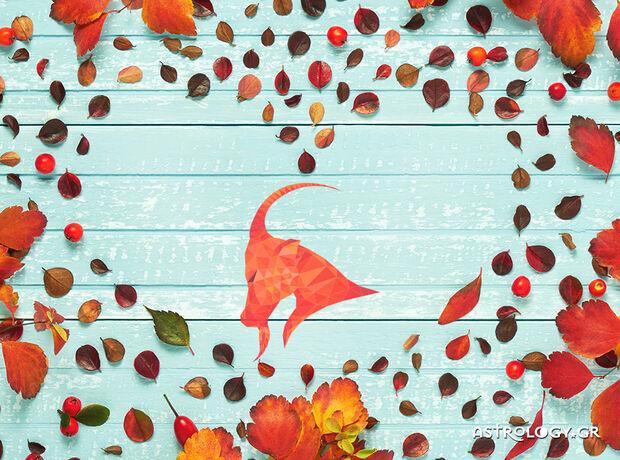 Αιγόκερε, τι δείχνουν τα άστρα για τα αισθηματικά σου την εβδομάδα 09/11 έως 15/11