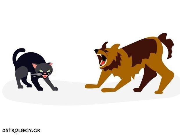Εσείς ψηφίσατε τα ζώδια που τσακώνονται σαν τον σκύλο με την γάτα!