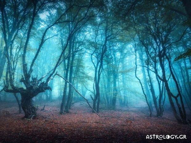 Ζώδια Σήμερα 09/12: Τοπίο στην ομίχλη