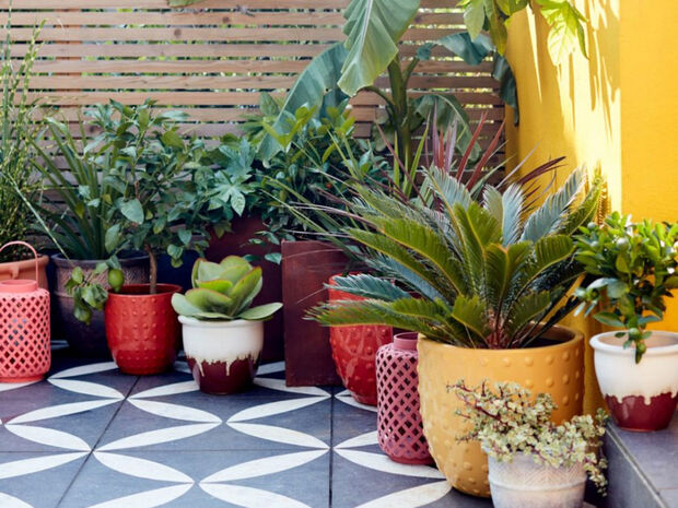 20+1 ιδέες για να δεις με «άλλο μάτι» την κηπουρική αλλά και τα φυτά στο μπαλκόνι σου (video)