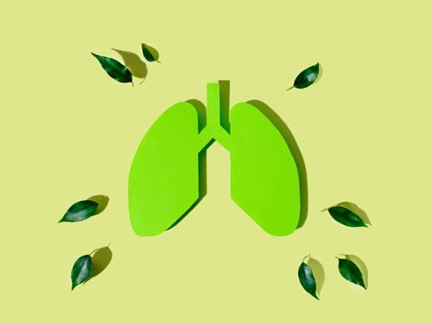 Παγκόσμια Ημέρα Άσθματος: Παράγοντες που πυροδοτούν τα συμπτώματα (εικόνες)