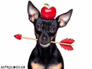 Τα 3 ζώδια που θα τα ρίσκαραν όλα για έναν έρωτα